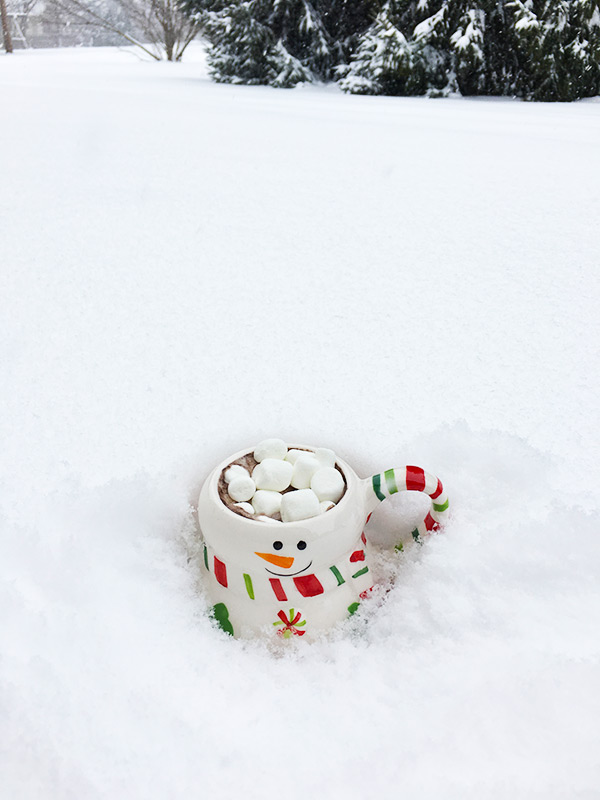 mug-of-wine-hot-chocolate-outside-in-snow